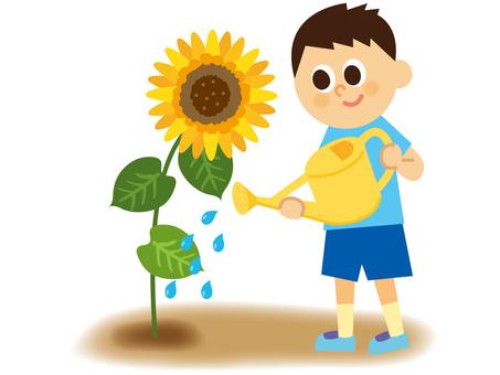 Children and sunflower _ 2