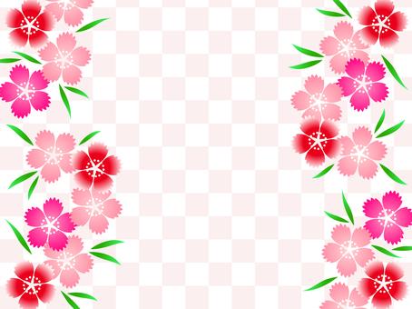 나데시코 01