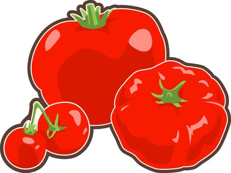 Food - Tomatoes