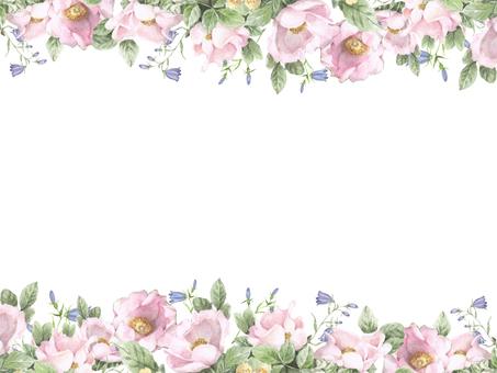 Flower frame 183 - Flower frame frame of wild rose in pink