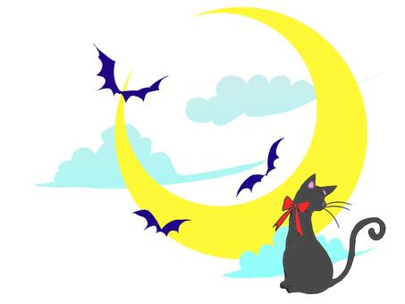 Moon bat black cat