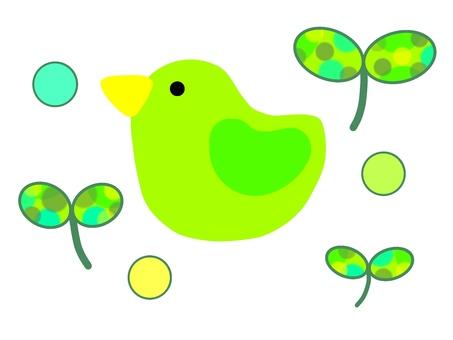 Futaba green and birds