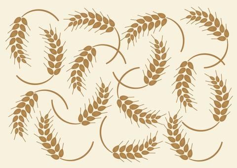 Wheat 002
