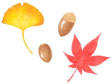 Leaves and acorn