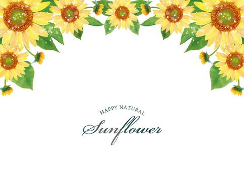 Summer background frame 090 sunflower watercolor