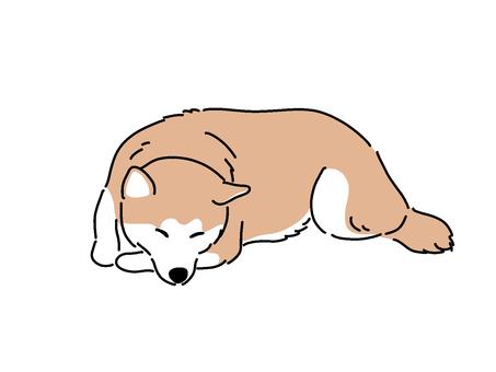 시바 [잠]