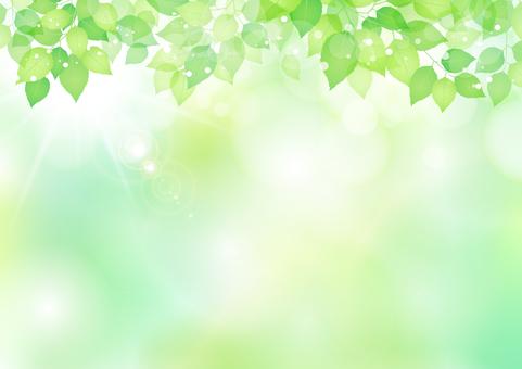 新的綠色材料225