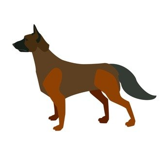 German · Shepherd · Dog