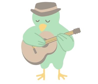 기타를 연주하는 새
