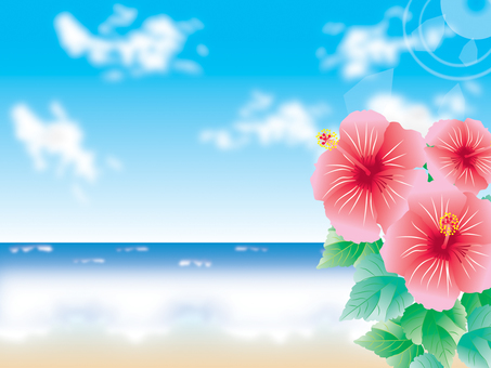 Sea _ Hibiscus