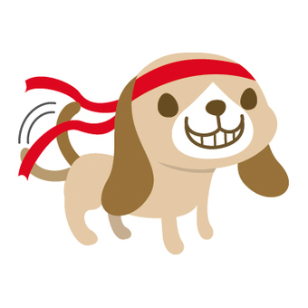 Hachimaki dog