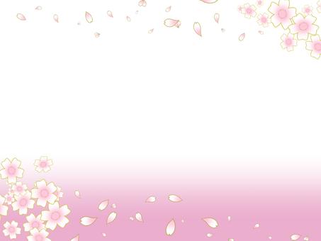 Cherry blossom, frame, pink