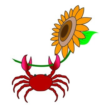 Crab and sunflower