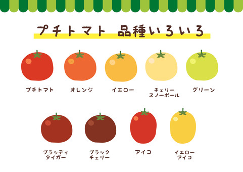 [Vegetables] Petite tomato variety set