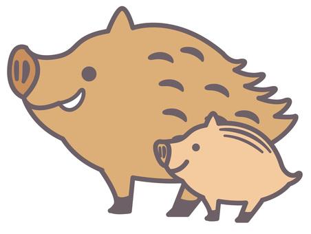 멧돼지의 삽화 41