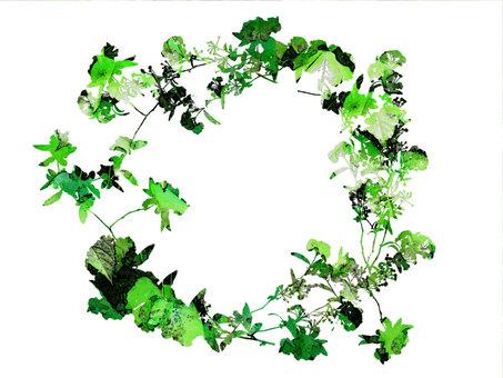 Green family leaf frame