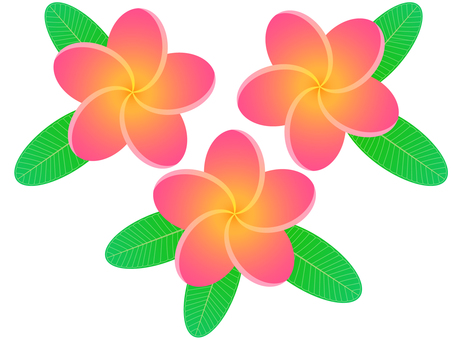 Plumeria and leaves (pink)