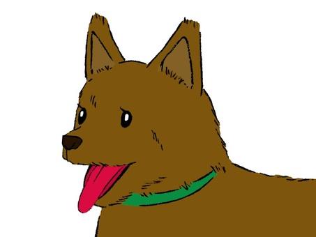 Dog-kun, I am in good mood 02
