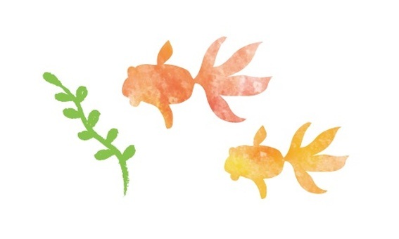 Watercolor style goldfish