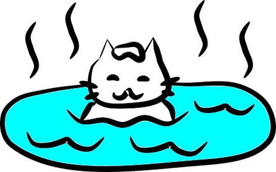 고양이 온천