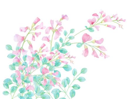 Hagi's flower ★ 0294-F