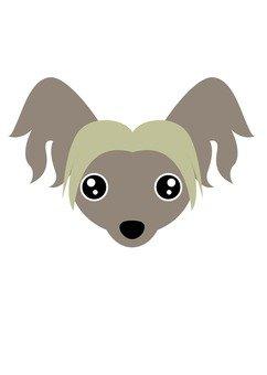 Dog 17