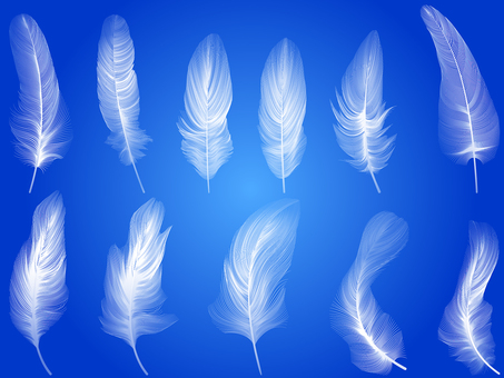 Real feather icon set