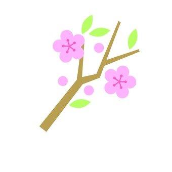 Peach blossoms 2
