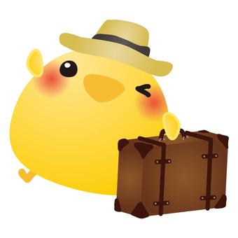 Chick travel