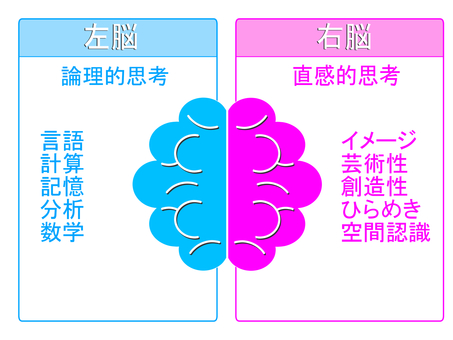 Explanation diagram of left brain of right brain