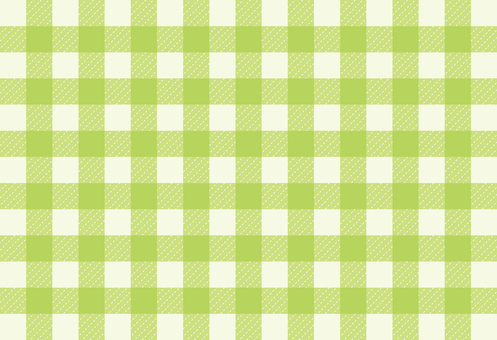 Gingham check 04