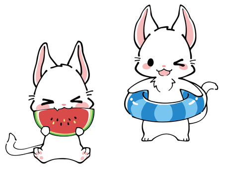 White Cat Summer Illustration (Float & Watermelon)