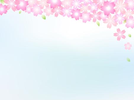 Cherry image 012