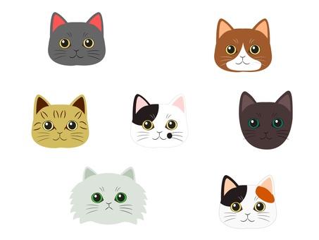 Various cat faces