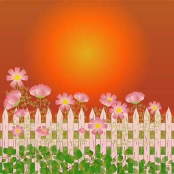 Flower bed of autumn cherry tree and sunset