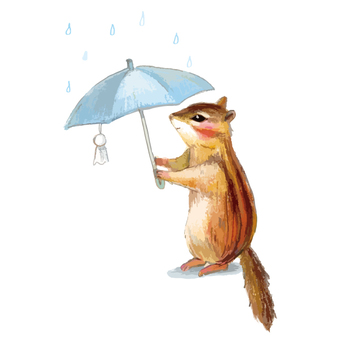 Squirrel with umbrella in the rain