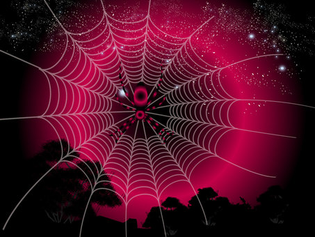 Spider web in starry sky 01