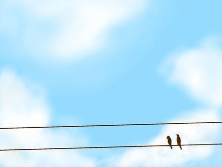 하늘과 새