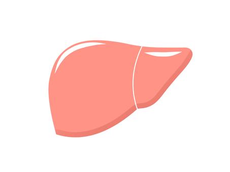 健康的肝臟2