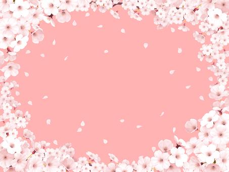 벚꽃 만개 프레임 핑크