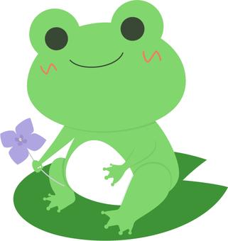 Frog _ Frog