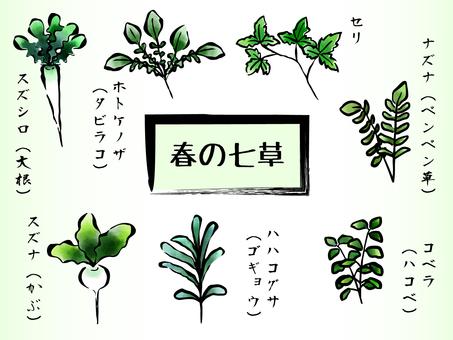 Spring taste Spring herb