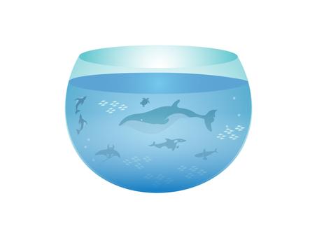 수족관에서 해양 생물