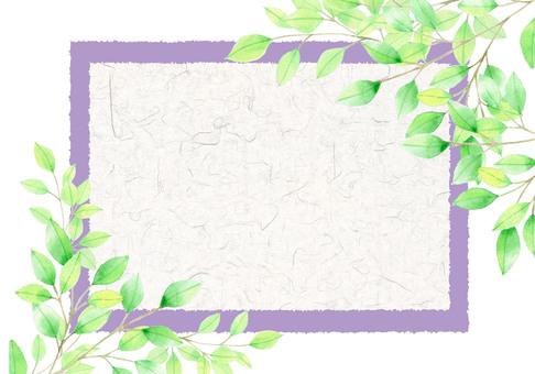 Fresh green card (purple) ★ 0071-F
