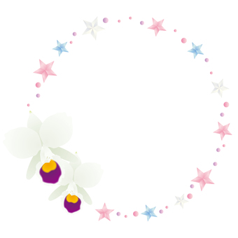Stars and Cattleya frame
