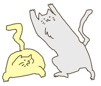 A cat jumping up