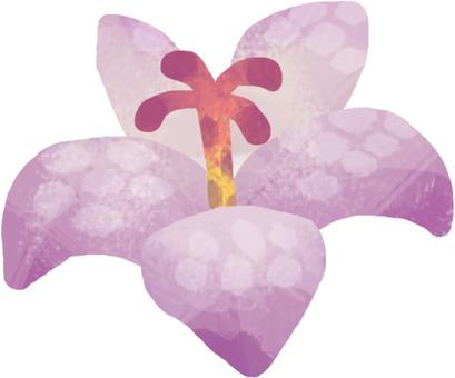 Flowers (Hototogisu / Hand Drawn)