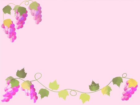 Grape frame 4.1