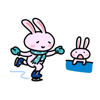 Mr. Usagi who skates (audience ant)