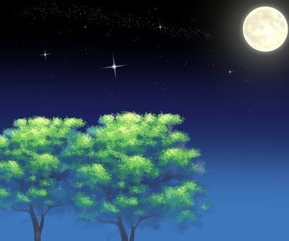 밤하늘 밤 달 별